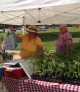 Chardon Farmers Market